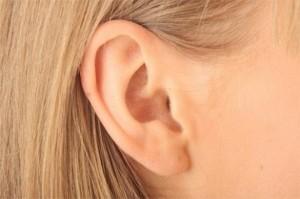 adivinar con las orejas
