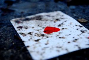 tarot amor perdido
